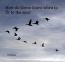 How do Geese know when to fly to the sun?