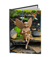 "planner ""a year of wonderment"""